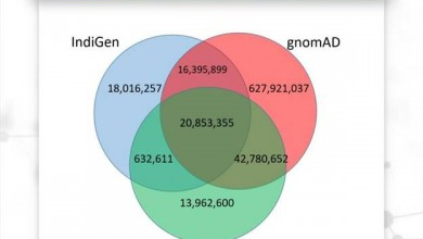 Photo of CSIR IndiGenome resource of 1029 Indian genomes provides a compendium of genetic variants representing the contemporary Indian population